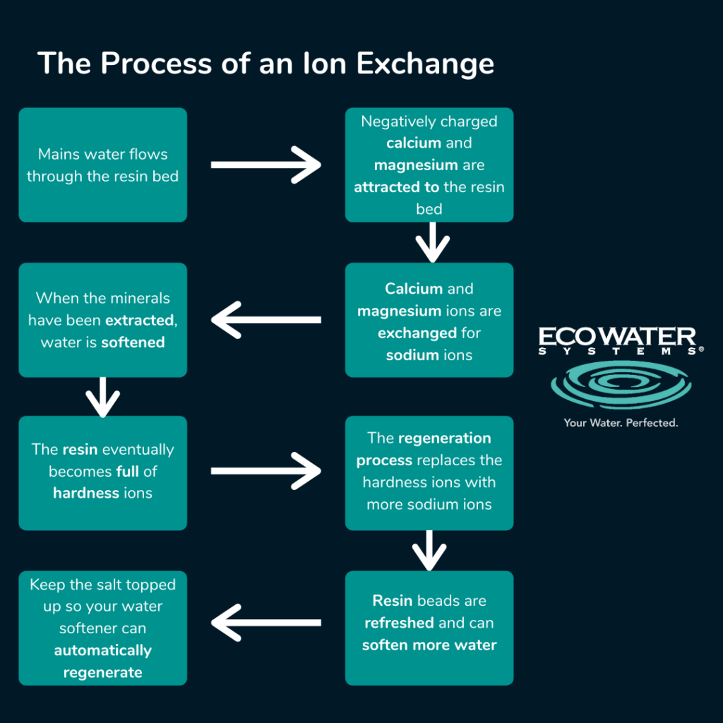Infographic showing ion exchange process