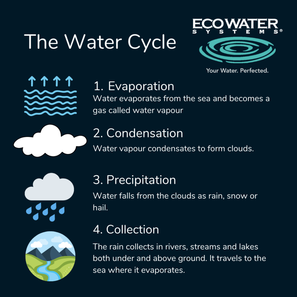 Inforgraphic of the water cycle